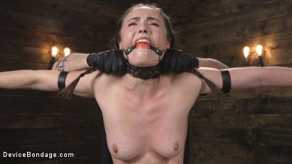 Photo number 4 from Petite Babe Casey Calvert Humiliated with Anal and Brutal Foot Torment shot for Device Bondage on Kink.com. Featuring The Pope and Casey Calvert in hardcore BDSM & Fetish porn.