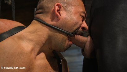 Photo number 3 from FIRST SHOOT for Muscle Stud Chad Stone shot for Bound Gods on Kink.com. Featuring Chad Stone , Dominic Pacifico and Sebastian Keys in hardcore BDSM & Fetish porn.