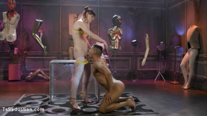 Photo number 8 from Natalie Mars Cuckolds the World: TS Star pounds slave, delivers JOI shot for TS Seduction on Kink.com. Featuring Natalie Mars  and Gabriel Dalessandro in hardcore BDSM & Fetish porn.