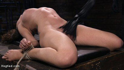 Photo number 10 from Roxanne Rae is Back to Suffer for The Pope shot for Hogtied on Kink.com. Featuring The Pope and Roxanne Rae in hardcore BDSM & Fetish porn.