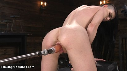 Photo number 14 from Slender Brunette Newcomer Gets Her First Taste shot for Fucking Machines on Kink.com. Featuring Lydia Black in hardcore BDSM & Fetish porn.