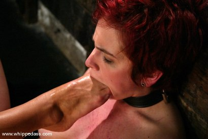 Photo number 12 from Sandra Romain and Rozen Debowe shot for Whipped Ass on Kink.com. Featuring Sandra Romain and Rozen Debowe in hardcore BDSM & Fetish porn.