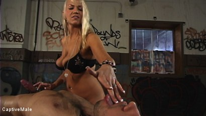 Photo number 10 from Miss Star's Student Gets a Hard Lesson shot for Captive Male on Kink.com. Featuring Dax Star and Xana Star in hardcore BDSM & Fetish porn.