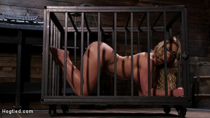 Photo number 1 from Phoenix Marie and Her Big Tits are Captured in Bondage and Tormented shot for Hogtied on Kink.com. Featuring The Pope and Phoenix Marie in hardcore BDSM & Fetish porn.