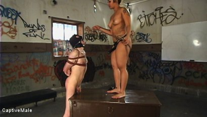 Photo number 15 from DragonLily Delivers Strict Discipline to Failing Student shot for Captive Male on Kink.com. Featuring TJ West and DragonLily in hardcore BDSM & Fetish porn.
