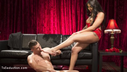 Photo number 20 from Sensual Sex in the Champagne Room with Honey Foxxx and Lance Hart shot for TS Seduction on Kink.com. Featuring Honey FoXXX and Lance Hart in hardcore BDSM & Fetish porn.