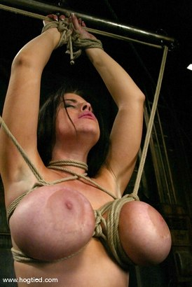 Photo number 7 from Daphne Rosen shot for Hogtied on Kink.com. Featuring Daphne Rosen in hardcore BDSM & Fetish porn.