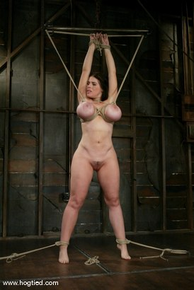 Photo number 9 from Daphne Rosen shot for Hogtied on Kink.com. Featuring Daphne Rosen in hardcore BDSM & Fetish porn.