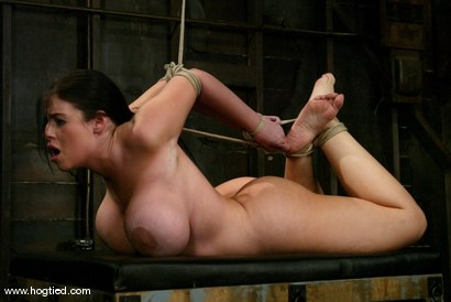 Photo number 13 from Daphne Rosen shot for Hogtied on Kink.com. Featuring Daphne Rosen in hardcore BDSM & Fetish porn.