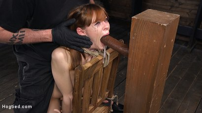 Photo number 3 from Red Headed Rope Slut Gets Brutalized and Made to Cum shot for Hogtied on Kink.com. Featuring The Pope and Alexa Nova in hardcore BDSM & Fetish porn.