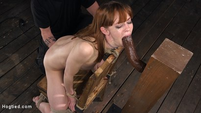 Photo number 5 from Red Headed Rope Slut Gets Brutalized and Made to Cum shot for Hogtied on Kink.com. Featuring The Pope and Alexa Nova in hardcore BDSM & Fetish porn.
