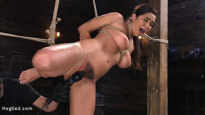 Photo number 1 from Submissive Big Tits in Brutal Bondage and Suffering shot for Hogtied on Kink.com. Featuring Karlee Grey in hardcore BDSM & Fetish porn.