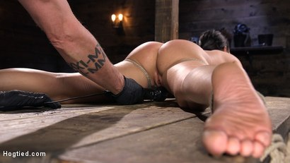 Photo number 14 from Submissive Big Tits in Brutal Bondage and Suffering shot for Hogtied on Kink.com. Featuring Karlee Grey in hardcore BDSM & Fetish porn.