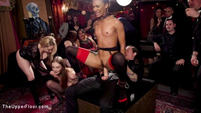 Photo number 6 from Masochistic Anal Sluts Stuffed With Cock at Holiday Ball shot for The Upper Floor on Kink.com. Featuring Aiden Starr, Owen Gray, Maya Kendrick and Nikki Darling in hardcore BDSM & Fetish porn.