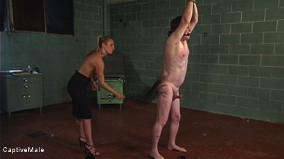 Photo number 9 from The Little Bitch Gets Taught A Lesson shot for Captive Male on Kink.com. Featuring Harmony and Riki Fixit in hardcore BDSM & Fetish porn.