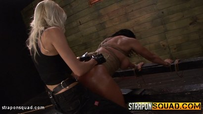 Photo number 8 from Hot Muscle MILF Becca Diamond's 1st Lesbian Domination shot for Strapon Squad on Kink.com. Featuring Becca Diamond, Brooklyn Daniels and Mila Blaze in hardcore BDSM & Fetish porn.