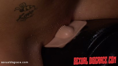 Photo number 7 from Kayleigh Nichole's First Slave Training Session Goes Well shot for Sexual Disgrace on Kink.com. Featuring Kayleigh Nichole and James Kickstand in hardcore BDSM & Fetish porn.