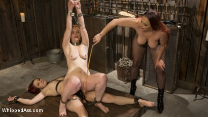 Photo number 9 from Young New Slave Brutally Inducted Into The Redhead Lesbian Dungeon shot for Whipped Ass on Kink.com. Featuring Bella Rossi, Violet Monroe and Emma Heart in hardcore BDSM & Fetish porn.