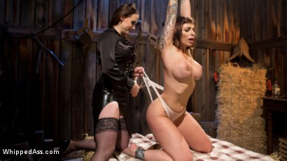 Photo number 4 from Busty Thief Captured and Tased to Orgasm! shot for Whipped Ass on Kink.com. Featuring Chanel Preston and Ivy LeBelle in hardcore BDSM & Fetish porn.