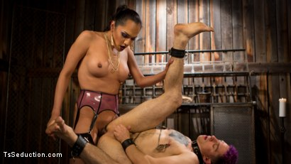 Photo number 13 from Out Foxed 2: Big Boss Becomes Dungeon Anal Whore shot for TS Seduction on Kink.com. Featuring Jessica Fox and Corbin Dallas in hardcore BDSM & Fetish porn.