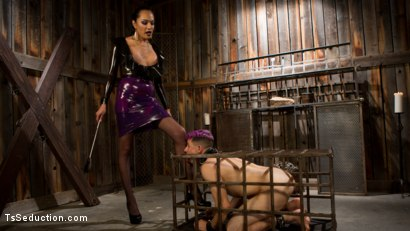 Photo number 3 from Out Foxed 2: Big Boss Becomes Dungeon Anal Whore shot for TS Seduction on Kink.com. Featuring Jessica Fox and Corbin Dallas in hardcore BDSM & Fetish porn.