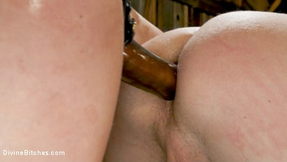 Photo number 12 from Rancher Mona Wales Breeds New Beefcake Pierce Paris shot for Divine Bitches on Kink.com. Featuring Mona Wales and Pierce Paris in hardcore BDSM & Fetish porn.