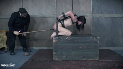 Photo number 20 from Sitting Pretty shot for Infernal Restraints on Kink.com. Featuring Charlotte Sartre in hardcore BDSM & Fetish porn.