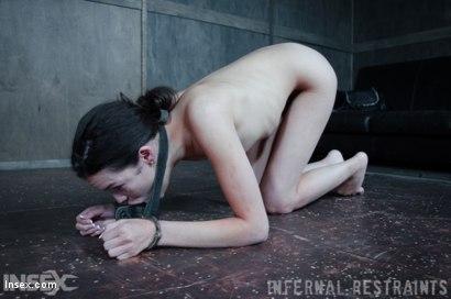 Photo number 13 from Oral Fixation shot for Infernal Restraints on Kink.com. Featuring Eden Sin in hardcore BDSM & Fetish porn.