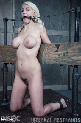Photo number 13 from Drool and Board shot for Infernal Restraints on Kink.com. Featuring Kenzie Taylor in hardcore BDSM & Fetish porn.