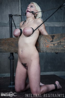 Photo number 14 from Drool and Board shot for Infernal Restraints on Kink.com. Featuring Kenzie Taylor in hardcore BDSM & Fetish porn.