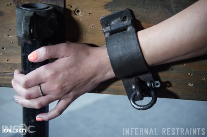 Photo number 5 from Drool and Board