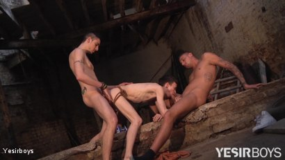 Photo number 16 from Obedience shot for Yesirboys on Kink.com. Featuring Harry Alexander, Timmy Treasure and Tyler Jankis in hardcore BDSM & Fetish porn.