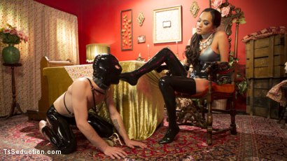 Photo number 6 from Kinky Tea Party with Jessica Fox shot for TS Seduction on Kink.com. Featuring Jessica Fox and Tony Orlando in hardcore BDSM & Fetish porn.