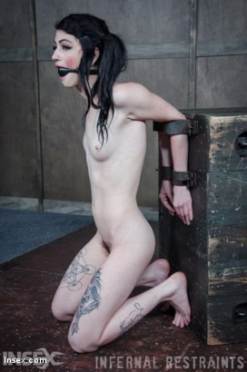 Photo number 11 from Dolled Up  shot for Infernal Restraints on Kink.com. Featuring Lydia Black in hardcore BDSM & Fetish porn.
