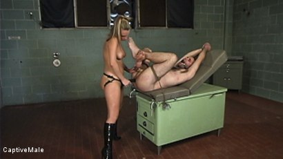 Photo number 17 from Harmony Evaluates Oscar Beyer with Brutal Cock Torment shot for Captive Male on Kink.com. Featuring Harmony and Oscar Beyer in hardcore BDSM & Fetish porn.