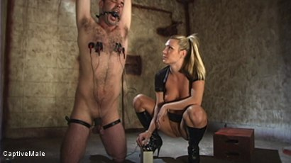 Photo number 5 from Harmony Evaluates Oscar Beyer with Brutal Cock Torment shot for Captive Male on Kink.com. Featuring Harmony and Oscar Beyer in hardcore BDSM & Fetish porn.