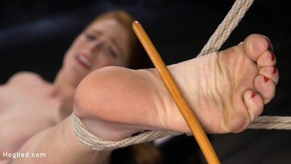 Photo number 10 from Red Headed Slut is Bound, Tormented, Double Penetrated and Made to Cum shot for Hogtied on Kink.com. Featuring Penny Pax in hardcore BDSM & Fetish porn.