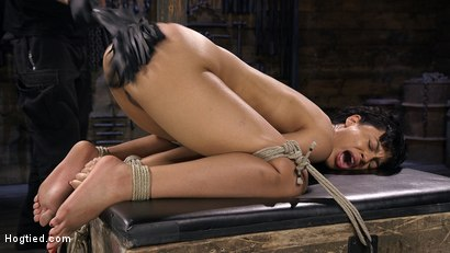 Photo number 11 from Eager Newbie Gets Tied and Tormented at the Hands of The Pope shot for Hogtied on Kink.com. Featuring Amethyst Banks in hardcore BDSM & Fetish porn.