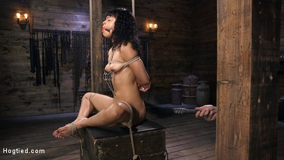 Photo number 2 from Eager Newbie Gets Tied and Tormented at the Hands of The Pope shot for Hogtied on Kink.com. Featuring Amethyst Banks in hardcore BDSM & Fetish porn.