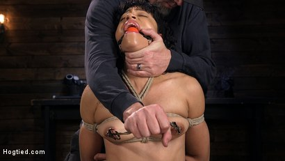 Photo number 3 from Eager Newbie Gets Tied and Tormented at the Hands of The Pope shot for Hogtied on Kink.com. Featuring Amethyst Banks in hardcore BDSM & Fetish porn.