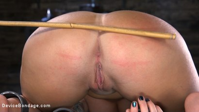 Photo number 7 from Tana Lea Is A Hard Nut to Crack shot for Device Bondage on Kink.com. Featuring Tana Lea in hardcore BDSM & Fetish porn.