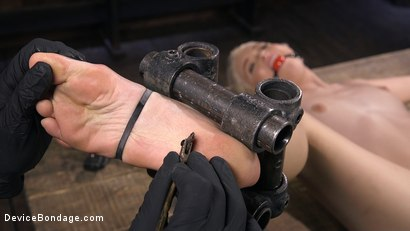 Photo number 11 from Newbie is Trapped in Evil Devices and Tormented shot for Device Bondage on Kink.com. Featuring Chloe Cherry in hardcore BDSM & Fetish porn.
