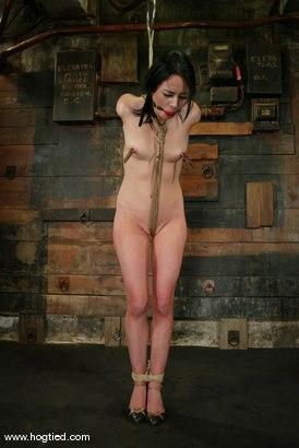 Photo number 2 from Alexa Von Tess shot for Hogtied on Kink.com. Featuring Alexa Von Tess in hardcore BDSM & Fetish porn.