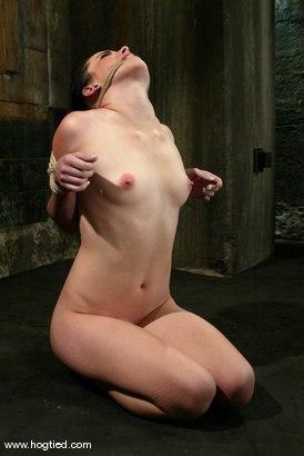 Photo number 11 from Alexa Von Tess shot for Hogtied on Kink.com. Featuring Alexa Von Tess in hardcore BDSM & Fetish porn.