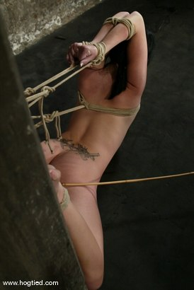 Photo number 4 from Alexa Von Tess shot for Hogtied on Kink.com. Featuring Alexa Von Tess in hardcore BDSM & Fetish porn.