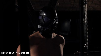 Photo number 7 from Ep 7 - The Business Slave: Seduced by Two Mistresses shot for Revenge Of The Baroness on Kink.com. Featuring Baroness Davina Dust, Princess Zuleika and Mr. Littleton in hardcore BDSM & Fetish porn.