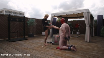 Photo number 1 from Ep 15 - Sploshing and Ballbusting: Humiliated by the Baroness shot for Revenge Of The Baroness on Kink.com. Featuring Baroness Davina Dust and Mr. Greenhen in hardcore BDSM & Fetish porn.