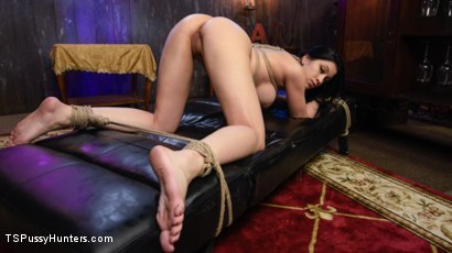 Photo number 8 from The Gorgeous Jenna Creed Fucks Cassandra Cain shot for TS Pussy Hunters on Kink.com. Featuring Cassandra Cain and Jenna Creed in hardcore BDSM & Fetish porn.