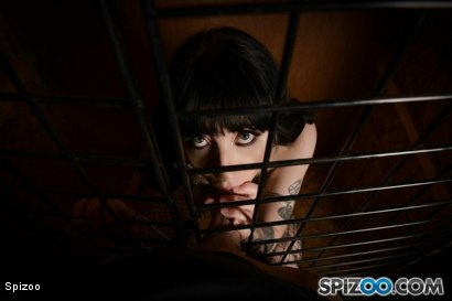 Photo number 11 from Charlotte Sartre: Pet Slut shot for  on Kink.com. Featuring Charlotte Sartre in hardcore BDSM & Fetish porn.