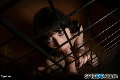 Photo number 12 from Charlotte Sartre: Pet Slut shot for  on Kink.com. Featuring Charlotte Sartre in hardcore BDSM & Fetish porn.